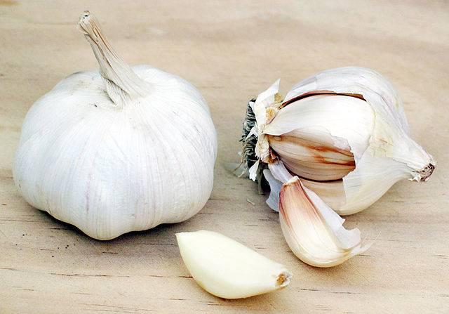 Herbes pour soigner les champignons - Innatia.fr