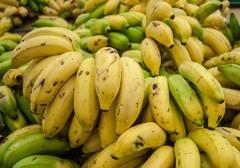 Platano Banana